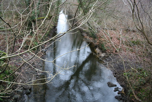 Looking upstream from the bridge