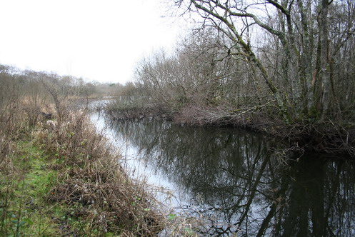 Looking along the canal towards Lough Nahincha