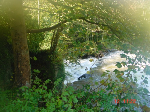 The Clodiagh below the weir