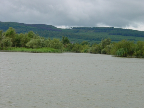 Where the Clodiagh joins the Suir