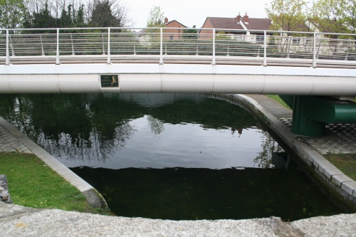 Ann Devlin Bridge