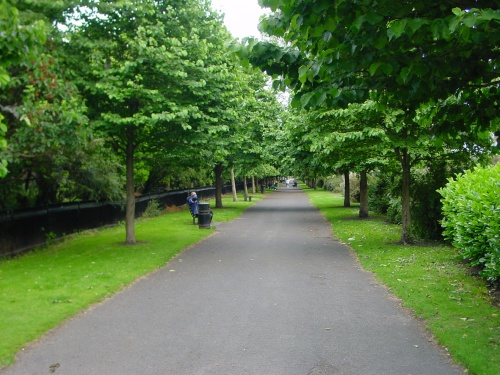 Looking south along the linear park