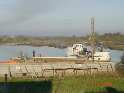 Coill-an-Eo at Shannonbridge