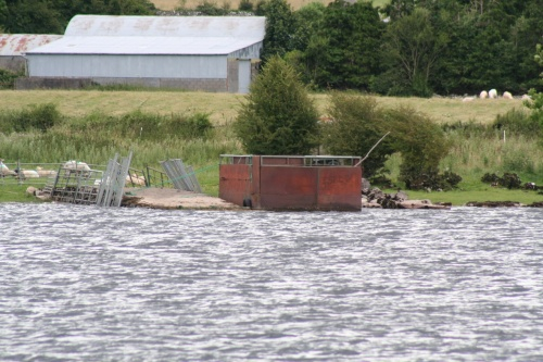 Cattle ferry on Lough Ree (July 2009)