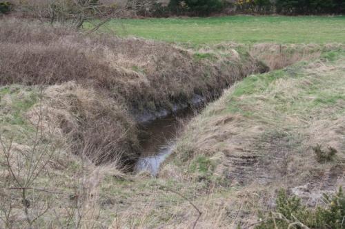 A bit further upstream