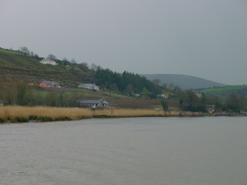 Houses on the east bank below New Ross