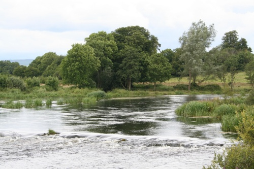 The lower outlet rejoins the Shannon amidst the trees