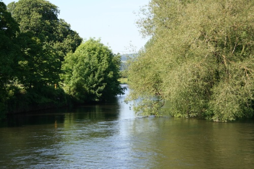 Downstream end of Suir Island (right) (2009)