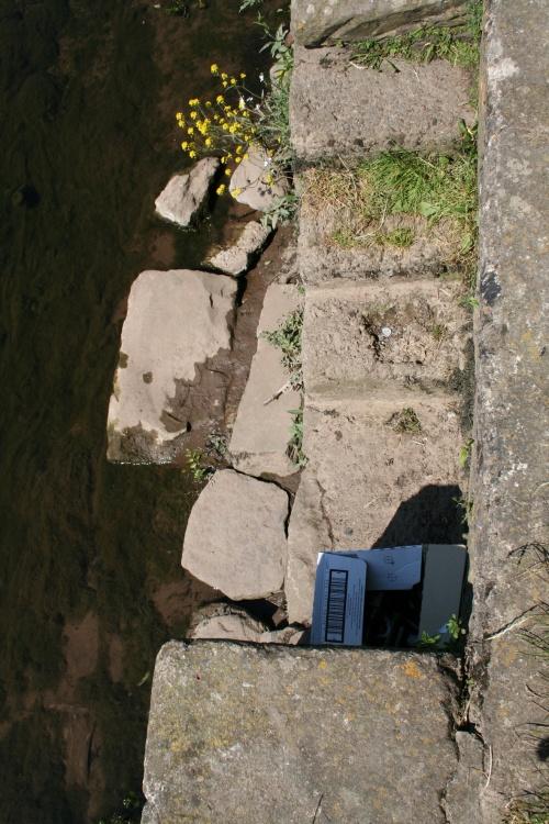 Steps (2009)