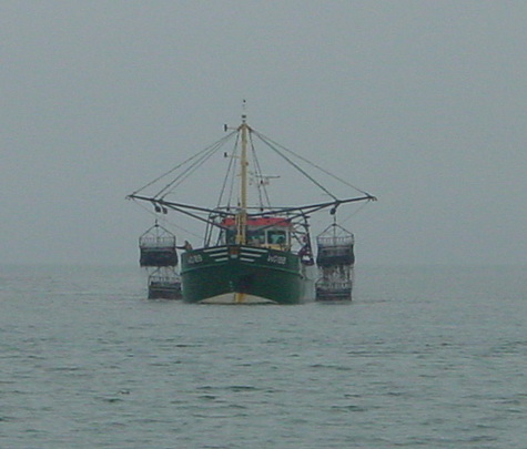wexford mussel dredgers 06