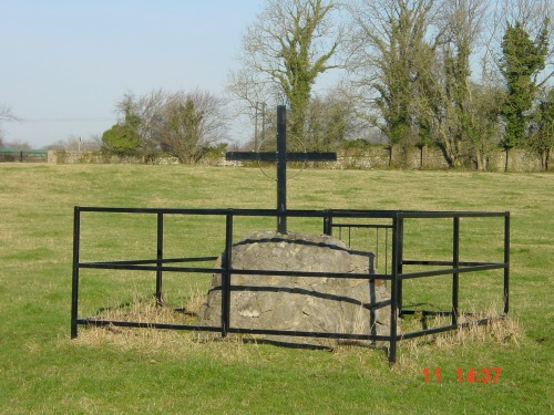 St Sarans Well near Shannonbridge 03_resize