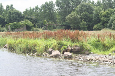 Ballinasloe Grand Canal footbridge 01_resize