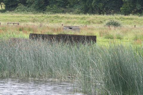 Ballinasloe Grand Canal footbridge 04_resize