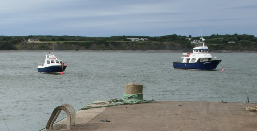 Carrigaholt new harbour 24
