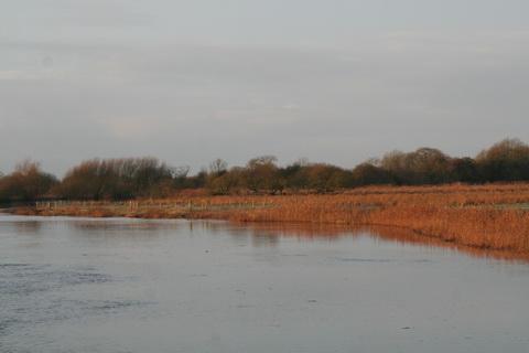 Shannon Harbour to Dromineer December 2014 116_resize
