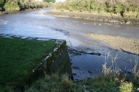 Unnamed quay on the Deel below Askeaton above Wyeth 13_resize