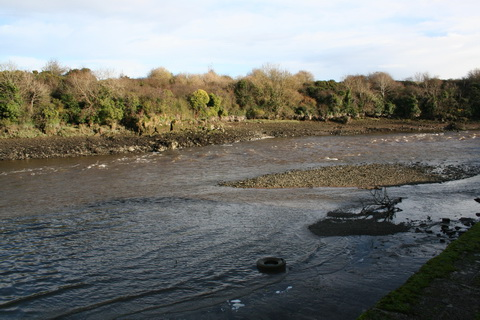 Unnamed quay on the Deel below Askeaton above Wyeth 1_resize