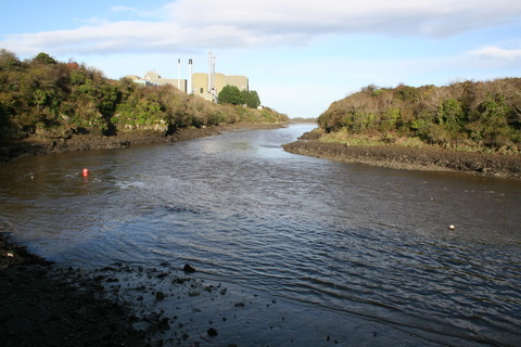 Unnamed quay on the Deel below Askeaton above Wyeth 4_resize