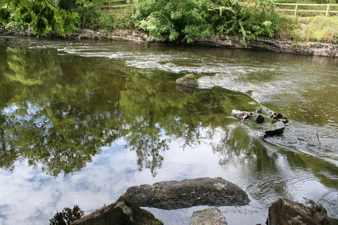 Possible remains of distillery weir_resize