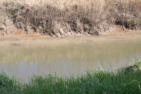 River Brickey 006_resize