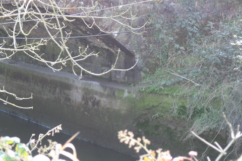 River Brickey 016_resize