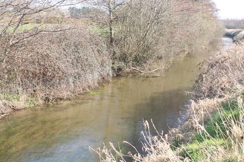 River Brickey 057_resize