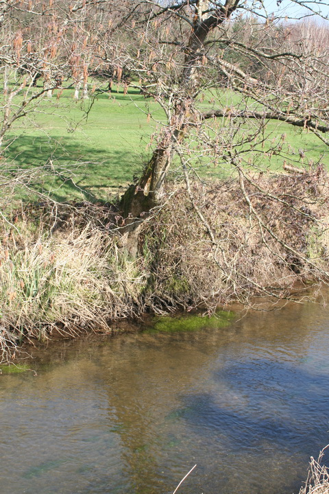 River Brickey 071_resize