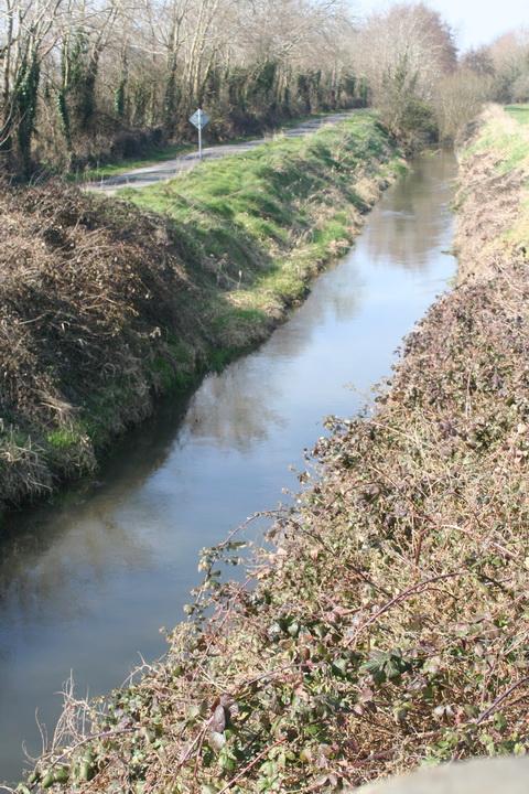 River Brickey 100_resize